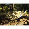 photo: Dream Hammock ThunderBird