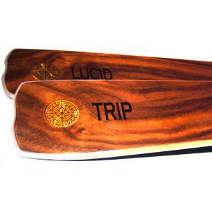Lucid Skis Trip