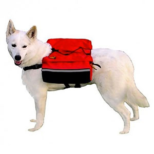 photo: Outward Hound Quick Release Dog BackPack dog pack