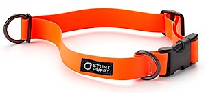 photo: Stunt Puppy  Dry Collar dog collar