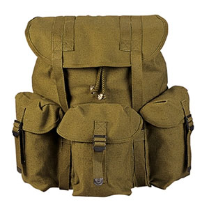 photo: U.S. Armed Forces ALICE Pack external frame backpack