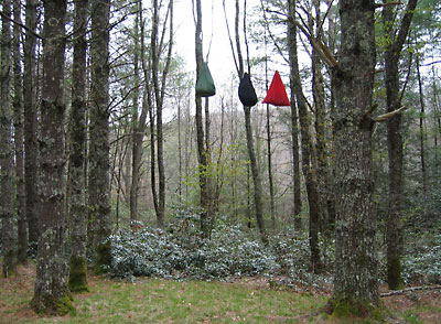 How To Hang Your Bear Bag Tips From Leave No Trace